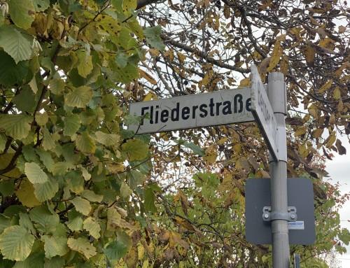 Grünes Licht für Wohnbebauung an der Fliederstraße